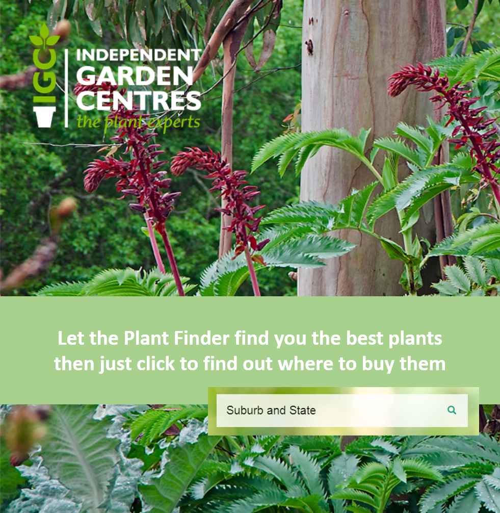 Plant Finder Search